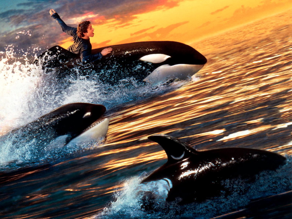 Free willy michael jackson every single michael jackson fan knows about will you be there being on the soundtrack of free willy but what we dont know is that it was not supposed voltagebd Gallery